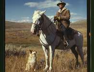 Shepherd with his horse and dog on Gravelly Range,